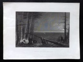 Bartlett America C1840 Antique Print. A Forest on Lake Ontario, USA